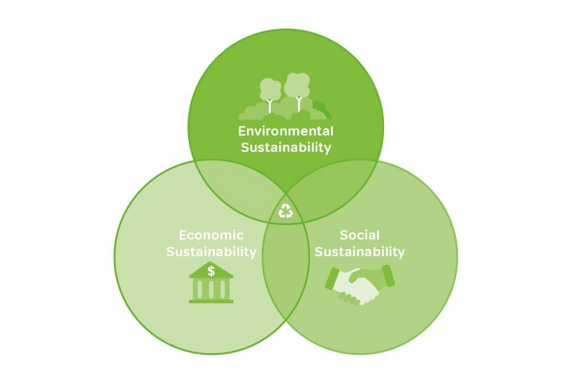 WEB AND SOCIAL ASSETS SUSTAINABILITY 15